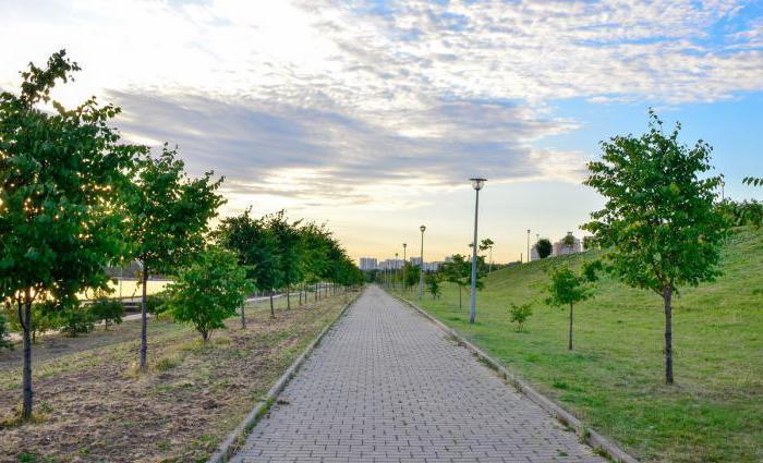 Братеевский каскадный парк как добраться