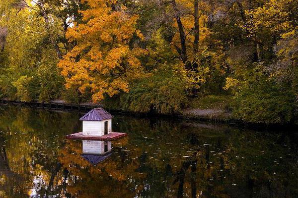 самые красивые парки москвы осенью