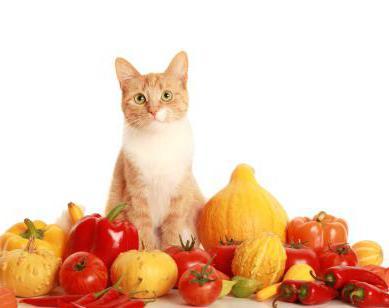 витамины тривит для животных [