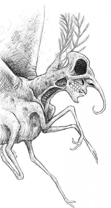 Смешное несуществующее животное рисунки