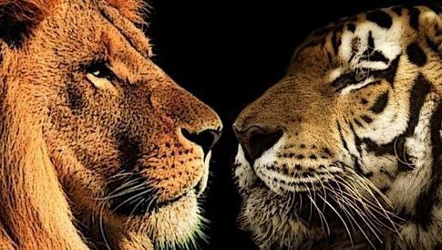 кÑ'о сильнее лев или Ñ'игр