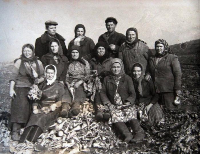 украина история образования государства