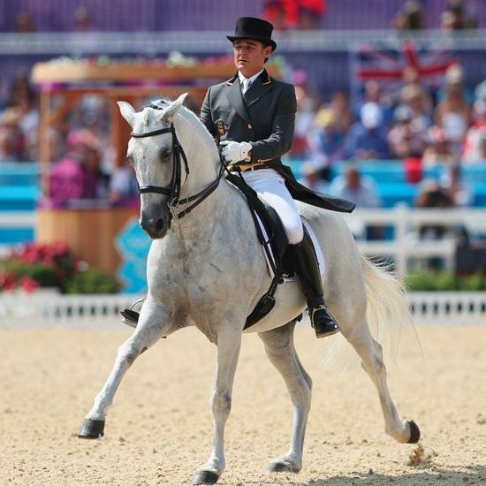Виды конного спорта – обилие и