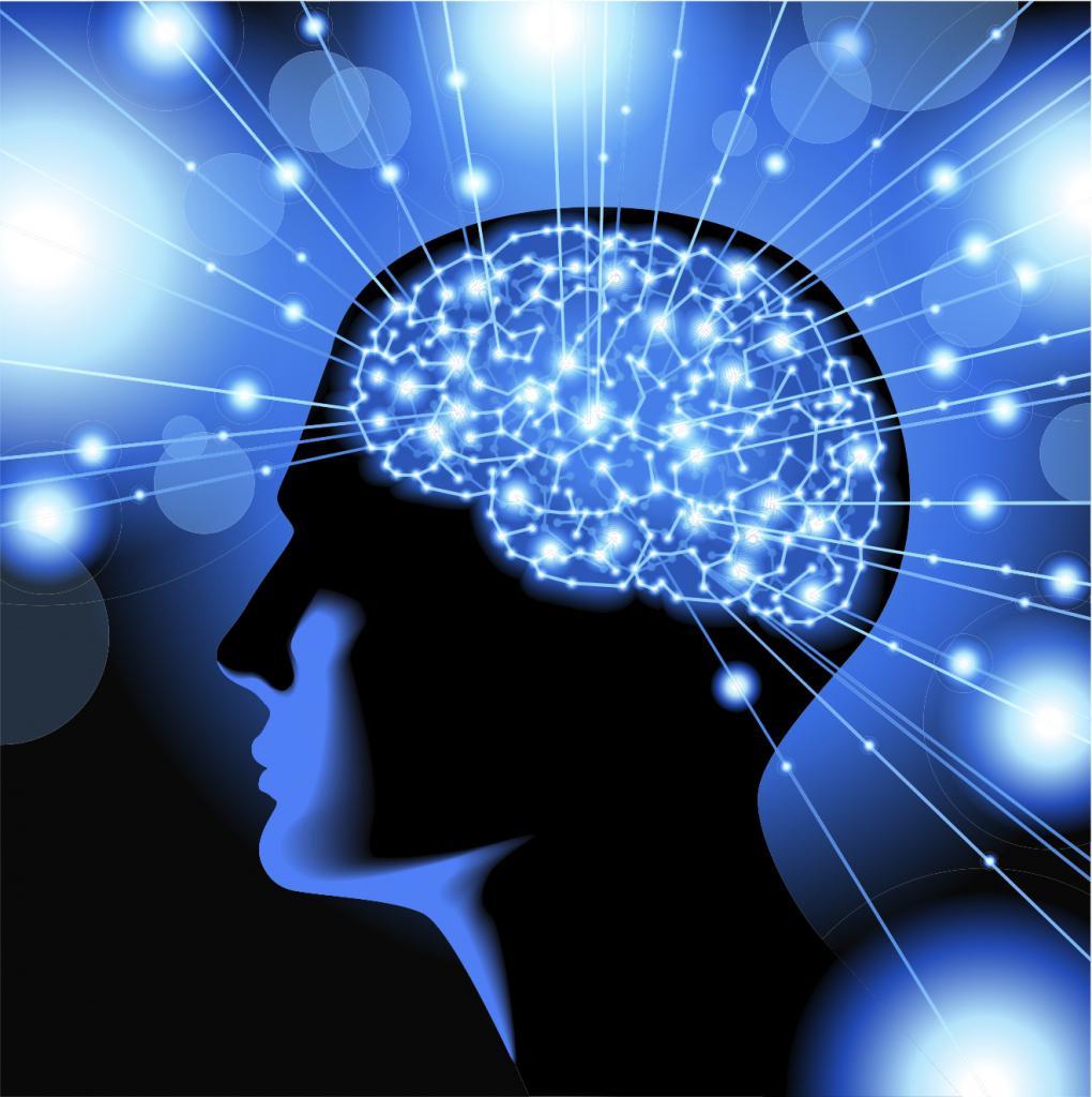 Активная работа мозга