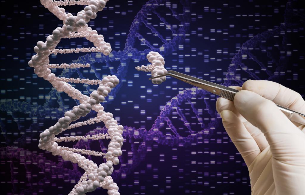 Роскосмос изучит вопрос генной трансформации человека для полетов в дальний космос