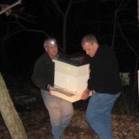 Когда заносить пчел на зимовку