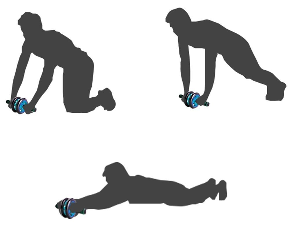 Упражнения с колесиком: с чего начинать, какие мышцы работают? Тренажер колесо с ручками