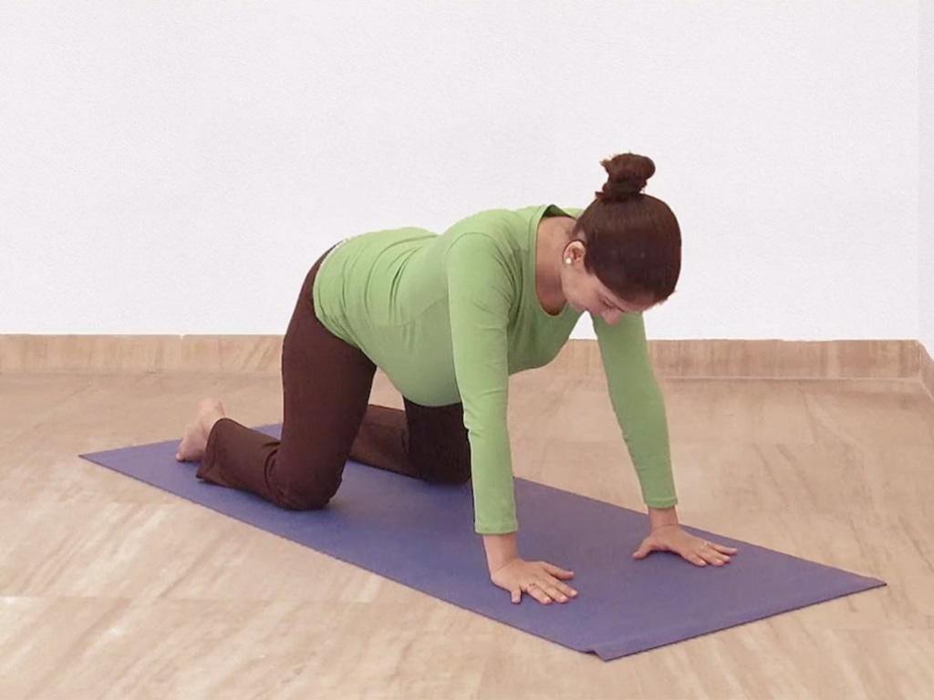 упражнение кошечка для беременных
