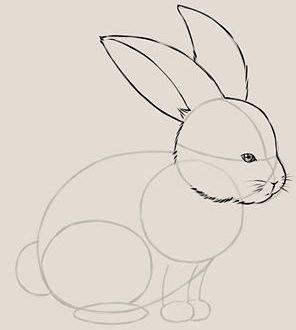 ка рисовать кролика поэтапно