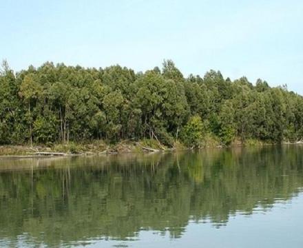 Самая большая река в россии находится