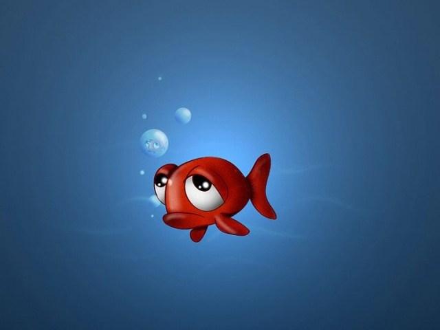 Мистические Рыбы: совместимость с другими знаками