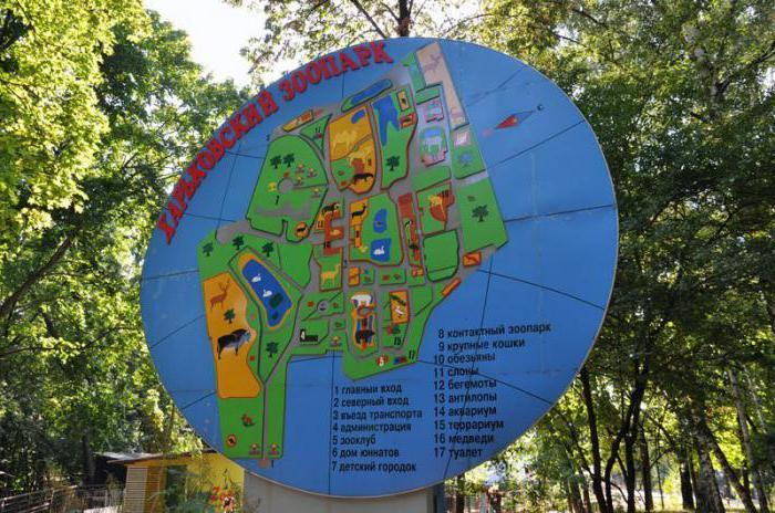харьковский зоопарк фото