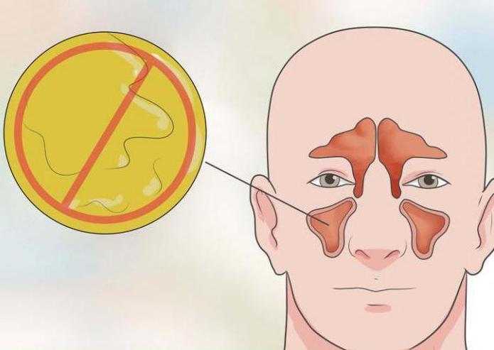 Чем лечить болячки в носу: ранки, вавки Мази для