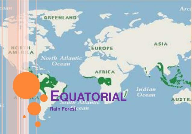 экваториальный тропический пояс