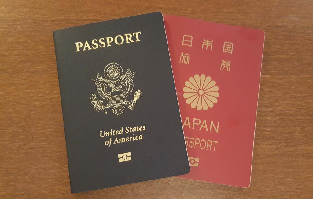 двойное гражданство в россии с какими странами разрешено в 2018 году