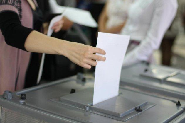 Выборы в местную власть