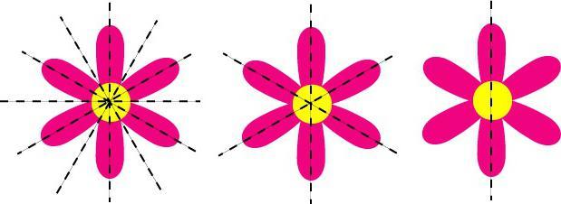 оси симметрии фигур