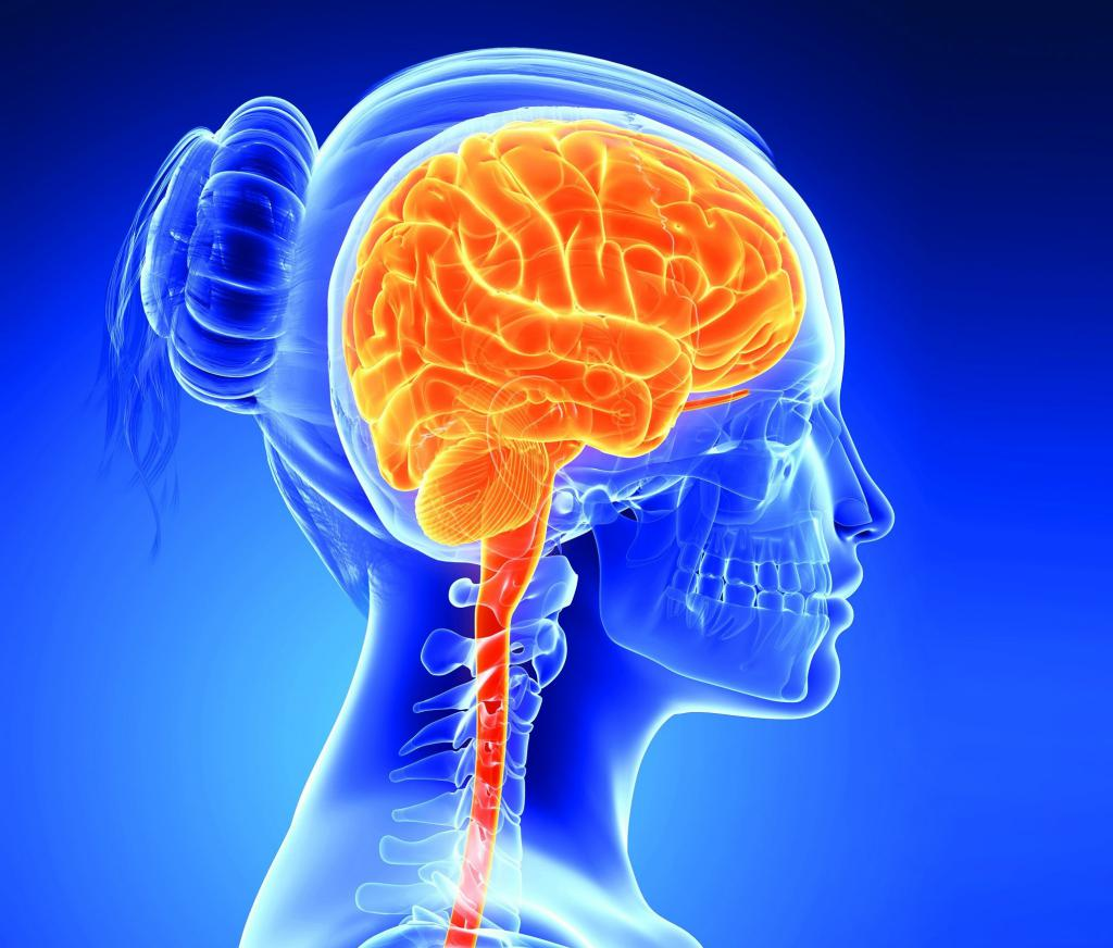 Шунтирование головного мозга при гидроцефалии у взрослых