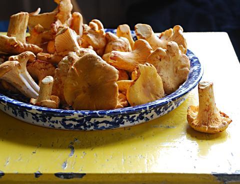 Как готовить перец фаршированный чтобы не горчил