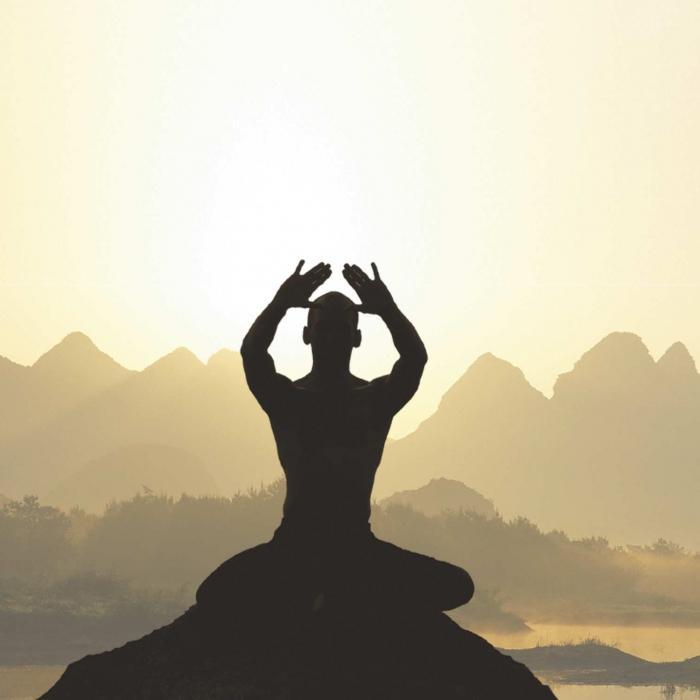 шри чинмой медитация