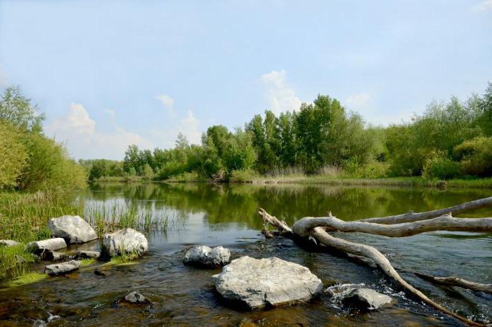 река урал яик