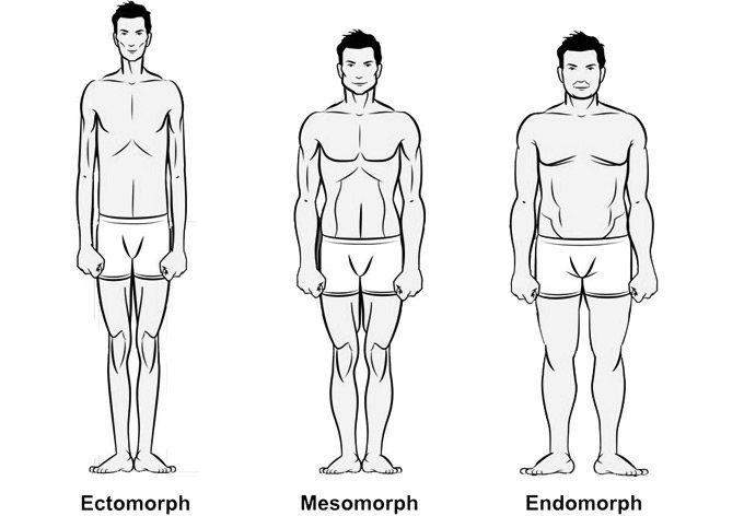 Эктоморфный фото