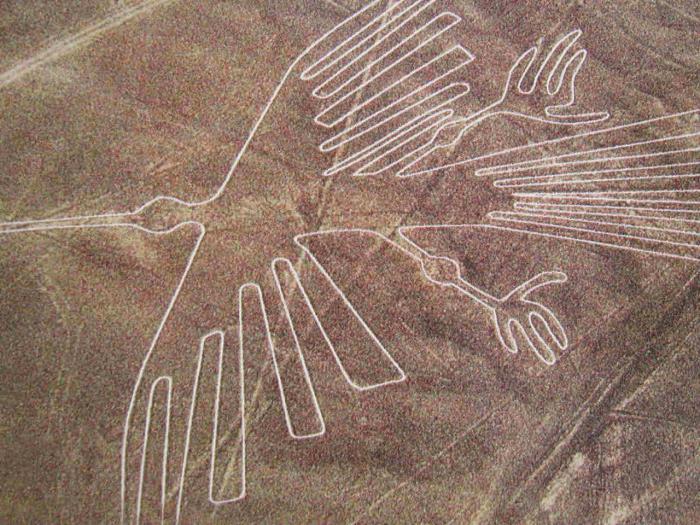 пустыня наска рисунки