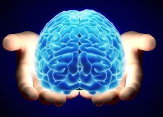 Как сделать мозги