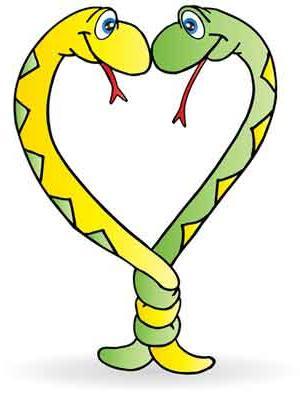 гороскоп дракон мужчина змея женщина