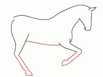 как правильно поэтапно нарисовать лошадь
