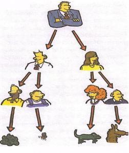 Делегирование полномочий в организации