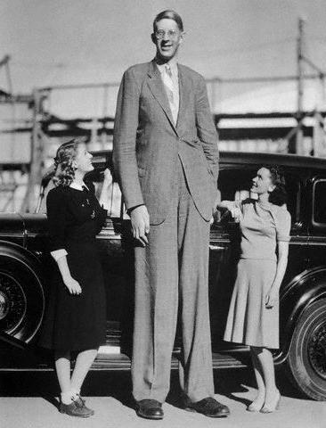 И самый высокий человек в мире