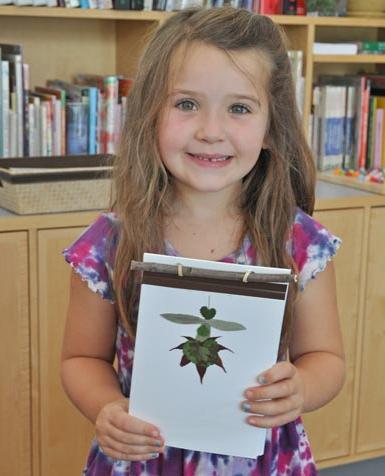 поделки из природного материала в детском саду