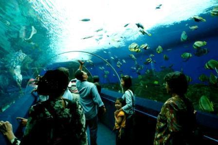 океанариум паттайя как добраться