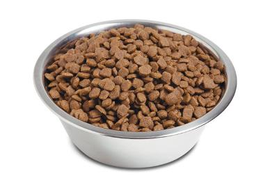 Собачий корм премиум класса