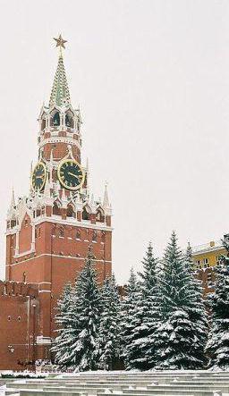 Кто похоронен у стен кремля