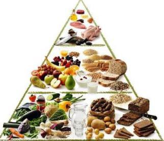 значение рационального питания