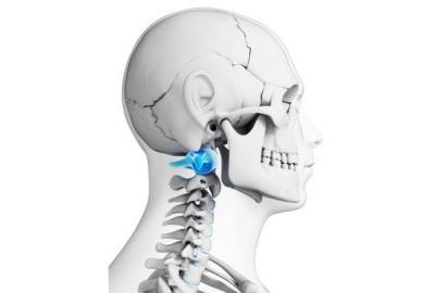 Шейный позвонок: анатомия, строение. Шейный отдел позвоночника