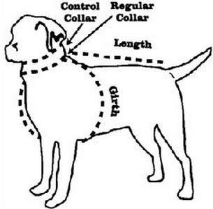 одежда для собак больших размеров