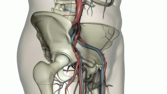 Боли в крестце, отдающие в ноги: причины, профилактика и лечение
