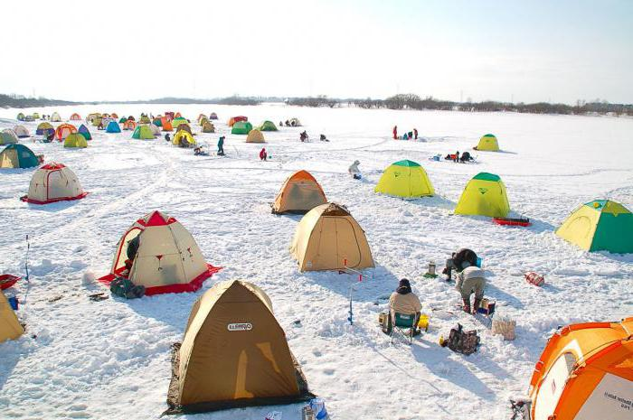 зимняя палатка медведь отзывы