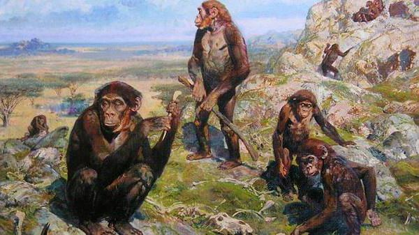 останки древнего человека неандертальца найдены