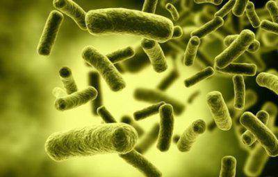 воспаление легких лечение антибиотиками