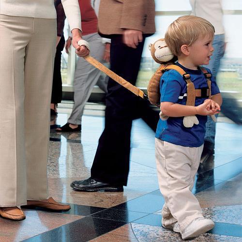 Ремень безопасности Diono поводок для детей Sure 18