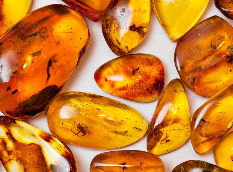 The use of amber