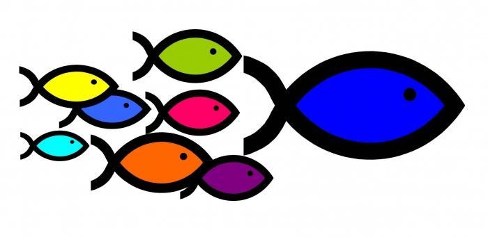кто увидел во сне рыба