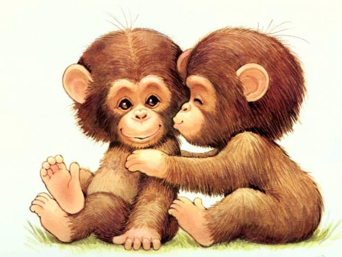 Приснилась обезьяна сонник мисс