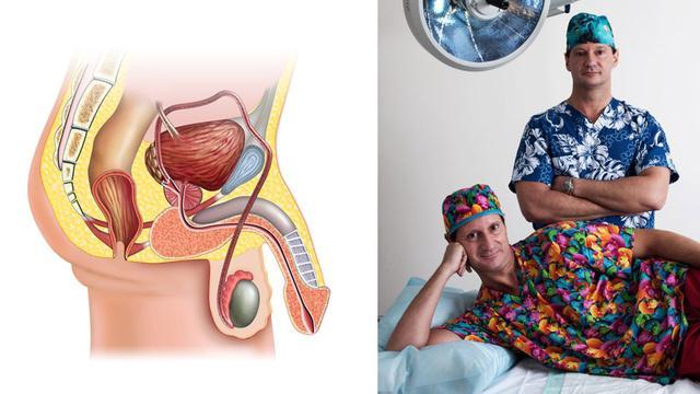 Стоимость операции по увеличению полового члена - Московский Доктор