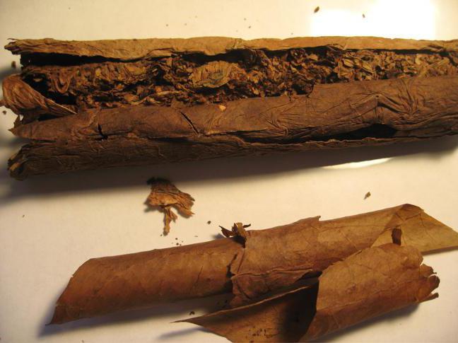 сигариллы марко поло содержание никотина