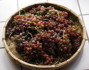 компот из винограда на зиму лучший напиток